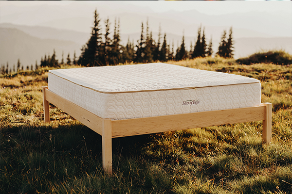 Bed Frame for Organic Mattress | Green Dream Beds | Durham, NC