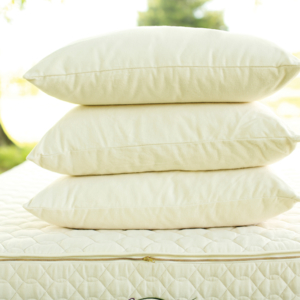 Organic Pillows | Green Dream Beds | Durham, NC