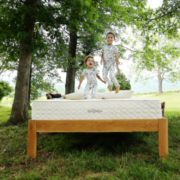 Eco-friendly mattresses are made from organic materials