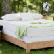 many advantages of choosing organic mattresses